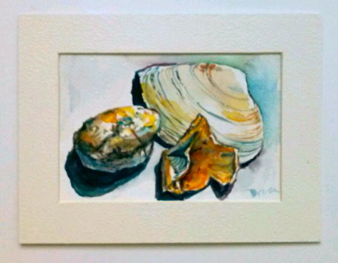 Beach Shells, 6x4 Watercolor, Arches 140lb cold press paper