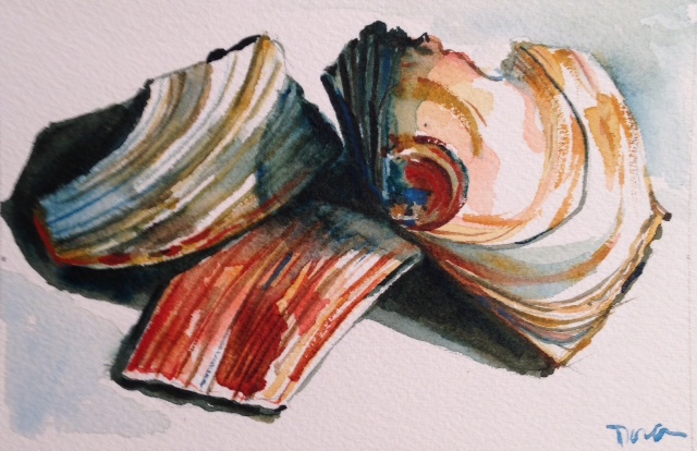 Three Shells ©Dora Sislian Themelis 6x4 Watercolor on Arches cold press paper